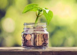 growing money pot banner